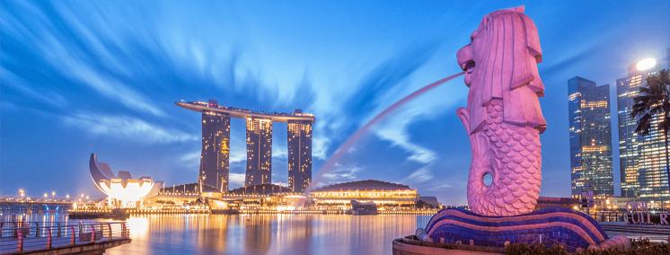 MOBIFONE GLOBAL SINGAPORE (SINGAPORE)